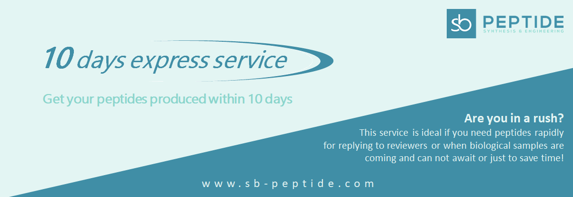 10 days express peptide synthesis service