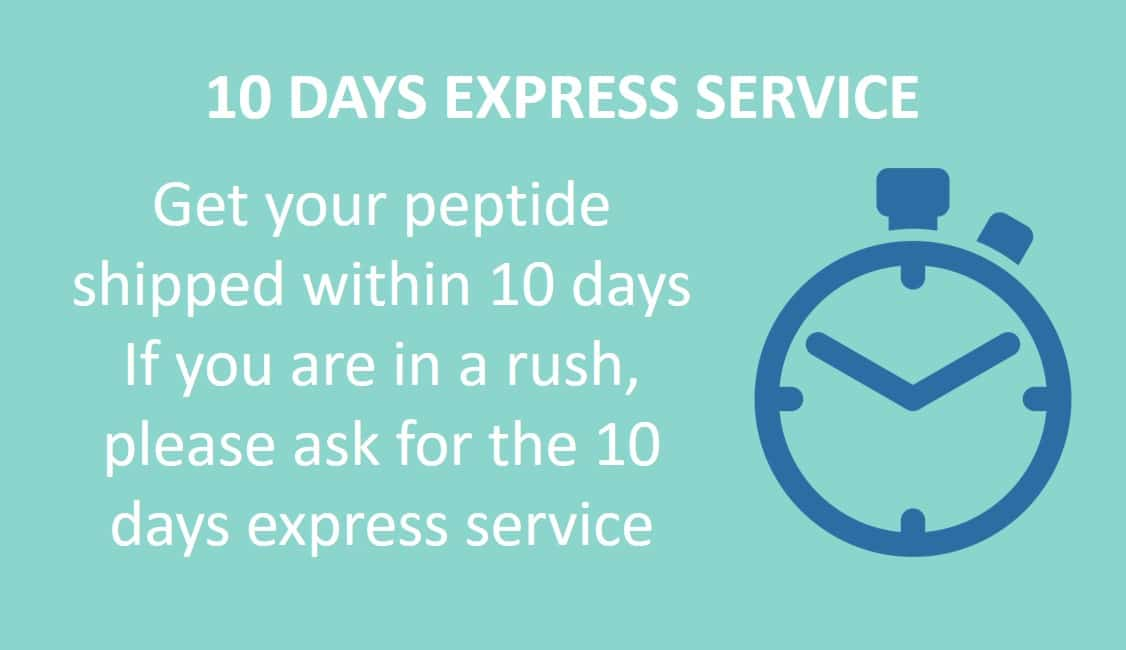 10 days express service - available options